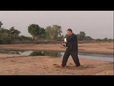 Easy Qigong & Easy Tai Chi - Senior Exercise Program - YouTube