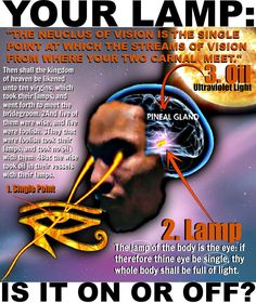 """The Secret Science Ancients Knew, Time Erased, Now Returned – But Greater, """"Truly the light is sweet & a pleasant thing it is for the eyes to behold the sun,"""" Ecclesiastes Spiritual Enlightenment, Spiritual Awakening, Illuminati, Calling All Angels, Master Of The Universe, Human Spine, Pineal Gland, Spirit Science, Black History Facts"""