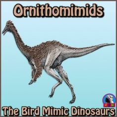 "Dinosaurs: Ornithomimids - ""The Bird Mimics"" PowerPoint Elementary Science, Science Education, Elementary Schools, Upper Elementary, Writing Activities, Science Activities, Classroom Activities, Animal Adaptations, Independent Reading"