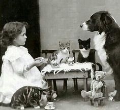 Extremely Weird Vintage Photos The tea party . I don't find this weird at all though.The tea party . I don't find this weird at all though. Vintage Pictures, Old Pictures, Old Photos, Vintage Children Photos, Weird Vintage, Vintage Tea, Tier Fotos, Jolie Photo, Vintage Photographs