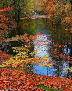 The Yedigoller (Seven Lakes) National Park, Bolu, Turkey....by serafettinyagmur