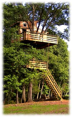A two level, adult tree house