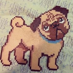 Pug dog perler beads by mknguyen88