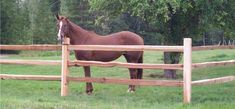 Robbie Goddard discovering and sharing front yard fence ideas and awesome related websites, NO AFFILIATION. western red cedar split rail fence post and rail american style horse