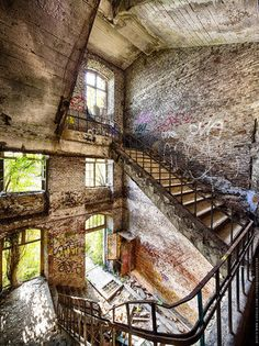 This abandoned Belgian fortress is purposefully being left to nature