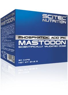 SCITEC MASTODON - Muscle Gain & Performance – DXHIVE Vanity SCITEC NUTRITION's MASTODON delivers Phosphatidic Acid (PA) in a scientifically studied effective dose!   Phosphatidic Acid is a phospholipid, which is a major structural component of all biological membrane systems.Phosphatidic Acid plays a critical role in the mechanical activation of mTOR signaling.#dxhivevanity#scitec#nutrition#gym#menperformance#mastodon