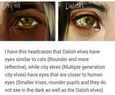 Eyes of the Elven OMG I have this same headcanon!