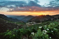 Semler Malibu Family Wines, Malibu, CA.  Los Angeles - 10 Best California Wineries with a View Slideshow at Frommer's