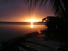 Key Largo, a tropical place to have fun - With #sedanservicemiami Florida provided by Transmiami you will go with style and safety around the best #keylargo attractions.