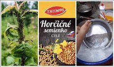 Horčcové semienka si kupujeme najmä ako dochucovadlo do obľúbených receptov, alebo počas sezóny ako tradičnú prísadu do zaváranín. Málokto však tuší, že obyčajné horčicové semienko je doslova zázračnou surovinou a pomôže vám v otázkach zdravia, v domácnosti ale aj v záhrade! Poklad pre každého záhradkára Horčicový prášok (získate zomletím horčicového semienka) je jednou z najlepších... Gardening, Diet, Health, Food, Liquor, Per Diem, Salud, Garten, Essen