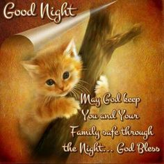 Pinbed by sherry decker Good Night Love Quotes, Good Night Prayer, Good Night Friends, Good Night Blessings, Good Night Messages, Good Night Image, Good Morning Good Night, Good Evening Wishes, Evening Greetings