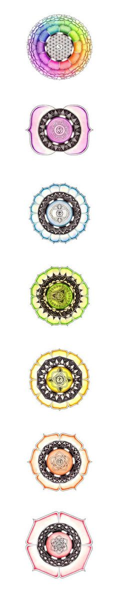 Set of Seven Chakras White Background