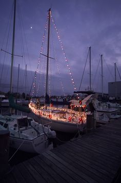 Sailboat Christmas lights ~ Hampton Harbor, VA