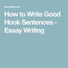 the complete idiot s guide to literary theory and  how to write good hook sentences essay writing