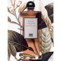 Serge Lutens Fleurs D'Oranger 50ml Eau De Parfum Spray - Serge Lutens parfum Dames - ParfumCenter.nl