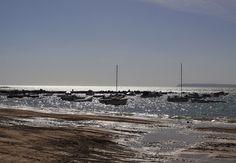 Playa de la Almadraba. Alicante.   Emplazada entre la playa de la Albufereta y el Cabo de las Huertas. Es una pequeña playa de rocas y arena oscura, con una longitud de 100 metros.