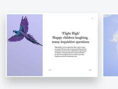 Flight High News Card