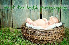 newborn girl in nest 6 days new