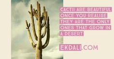 Cacti are beautiful once you realise they are the only ones that grow in a desert Charts For Kids, Cacti, Deserts, Thoughts, Motivation, Education, Inspiration, Beautiful, Cactus Plants
