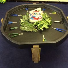 tomato leaves, sage and lavender to practice scissor skills. (I like the table too. wonder how I could make one?)Rosemary, tomato leaves, sage and lavender to practice scissor skills. (I like the table too. wonder how I could make one? Nursery Activities, Motor Activities, Sensory Activities, Dinosaur Activities, Sensory Bags, Sensory Diet, Sensory Play, Tuff Spot, Kindergarten Montessori