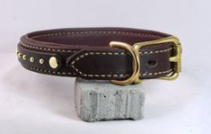 Hey, I found this really awesome Etsy listing at https://www.etsy.com/listing/180234179/small-classy-brass-dog-collar-leather