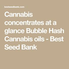 Cannabis concentrates at a glance Bubble Hash Cannabis oils - Best Seed Bank