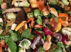 food waste nigeria