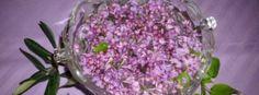 Cvjetnica i običaji za cvijetnicu