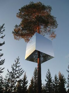 "Tree house in Sweden: ""Mirror Cube Hotel""."