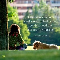To sit with a dog on a hillside on a glorious afternoon is to be back in Eden. Natalie Lloyd