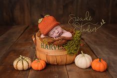 Kansas City Newborn Photographer, Swade Studios - www.swadestudiosphotography.com Fall, pumpkins, harvest basket, newborn baby pumpkin hat.