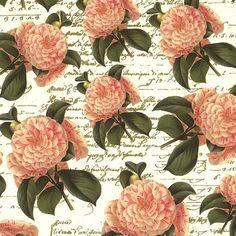 Made In Italy Authentic Florentine Paper Traditional Print Pink Camellias By Rossi