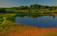 Conway Farms Golf Club in Chicago's North Shore area.  Home of the 2013 BMW Championship.