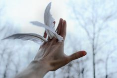 """""""I once asked a bird, how is it that you fly in this gravity of darkness? The bird responded, 'Love lifts me.'"""" ― Hāfez"""