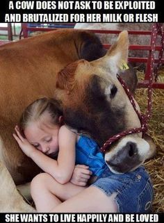 a cow does not ask to be exploited and brutalized for her milk or flesh. She wants to live happily and be loved