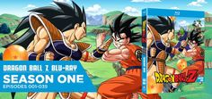 Dragon Ball Z-Season 1 ( Vegeta Saga ) Watch All Dragon Ball Z Episodes The first season of the Dragon Ball Z anime series was directed by Daisuke Nishio and produced by Toei Animation. It contain