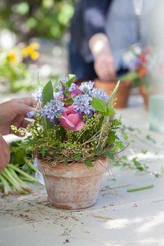 Skapa med vårblommor i kruka - Blomsterverkstad