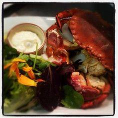 Whole Portland Crab