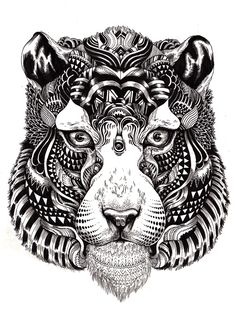 Illustrations de Iain Macarthur #nice #illustration