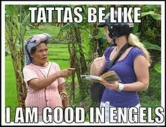 The tattas be like memes are a trending topic among Dutch Facebook users. The memes depicts the stereotype of people in the Netherlands in a funny way. As a Dutch person, I have to say that some things are recognizable. Some people might find it offensive, but I guess the majority can laugh about it since it has become so popular.