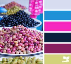 Design Seeds for all who color Colour Pallette, Colour Schemes, Color Combos, Color Patterns, Design Seeds, World Of Color, Color Of Life, Color Harmony, Color Balance