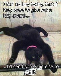 At Least I'm Accomplishing Something...I Won an Award