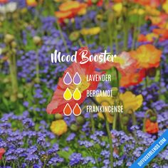 Mood Booster - Essential Oil Diffuser Blend #Essentialoildiffusers