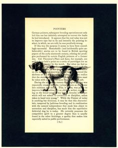high res image of a german shorthair pointer printed on an old book page describing german shorthair pointers