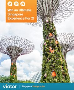 Looking for a great time on your upcoming ‪#‎vacation‬ to ‪#‎Singapore‬? Enter our ‪#‎giveaway‬ for a chance to win an ultimate experience for 2!