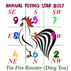 2017 Flying star Xuan Kong annual analysis for year of the Rooster Ding You - Feng Shui Store