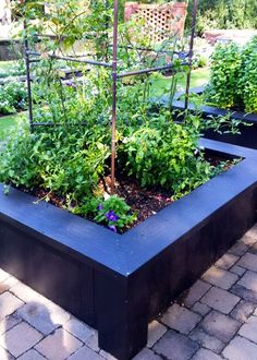 Take your vegetable and flower gardens to a higher level-- literally-- by adding raised garden beds. By simply elevating and containing the soil and plants, you will harvest higher yields due to the loose, rich soil and intensive planting. Get started with raised bed gardening at The Home Depot's Garden Club.