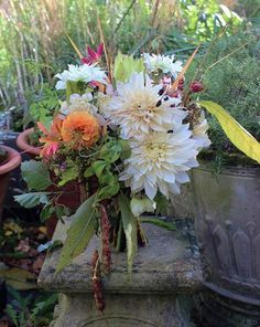 Autumn bouquet of dahlias and borlotti beans from Lock Cottage Flowers