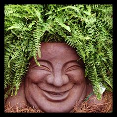 Over-sized Buddha Face planter for the gardener with a sense of humor!