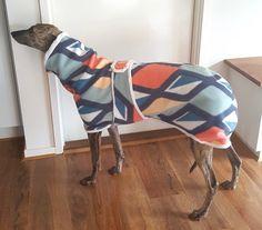 Cozy Greyhound